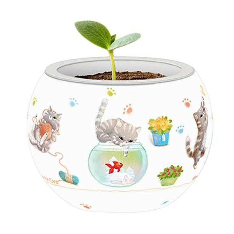 Puzzle Flowerpot   Cat+39s Play Time