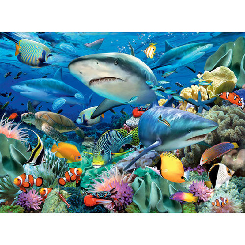 Ravensburger  Reef of The Sharks