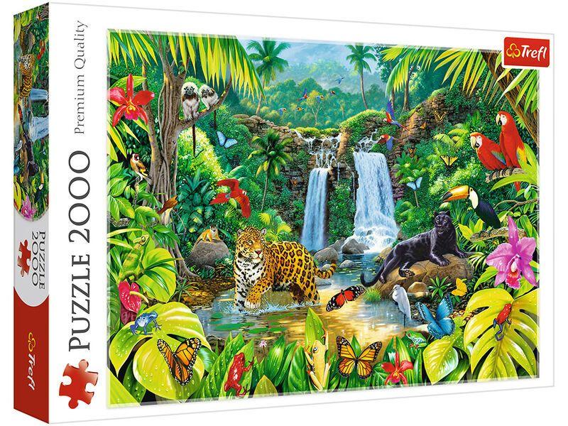 Trefl  Tropical Forest
